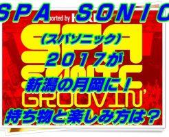 SPA SONIC(スパソニック)2017が新潟の月岡に!持ち物と楽しみ方は?