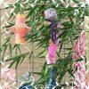 七夕のプレゼントに良い花は?女性(妻)や男性(彼氏)向けの花言葉も!
