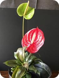 生け花 サンプル2