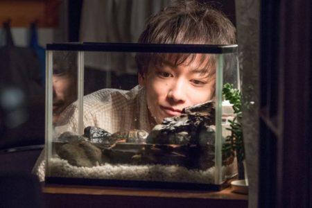 【佐藤健が出演した有名作品は?おすすめの出演恋愛映画&ドラマも!】